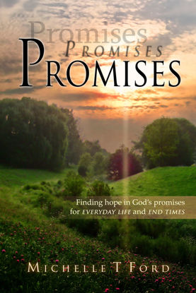Picture of Promises, Promises, Promises By Michelle Ford (Paperback)